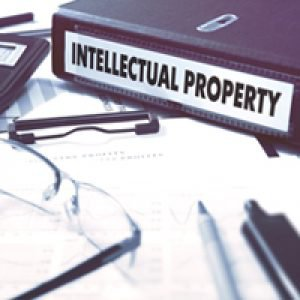 netscribes intellectual property protection