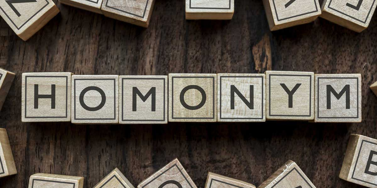 Homonyms-commonly confused words english