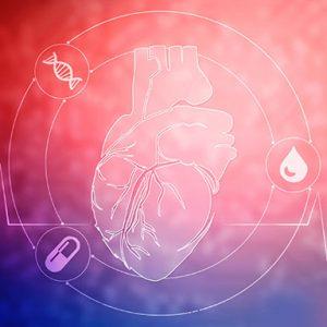 Cardiovascular market assessment