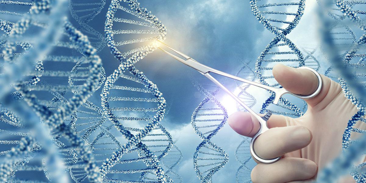 CRISPR startup ecosystem