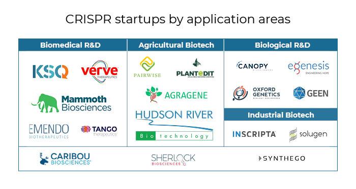 CRISPR startup applications