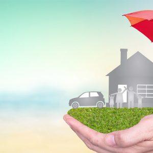 brand performance management insurance